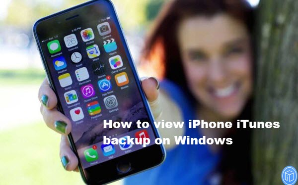 see iphone itunes backup on windows